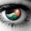 PalestineMyHeart